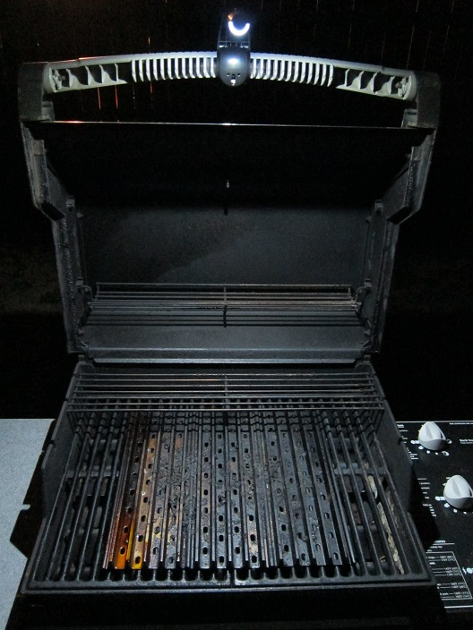 Gril-Lit Grill Night
